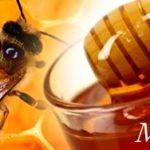 Beza Madu Royal Jelly dengan Madu Asli biasa